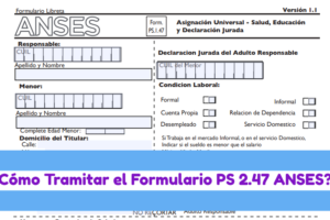 FORMULARIO-ps-1-47-anses-argentina