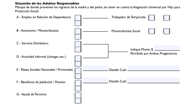 formulario 269 argentina anses adultos responsables