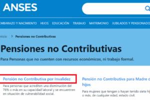 requisitos-solicitar-pension-discapacidad-argentina-no-contributiva-invalidez-anses