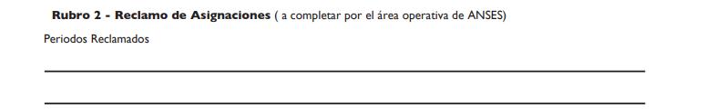 rubro2-datos-llenar-formulario-ps-2-72-anses.